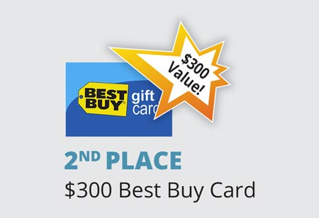 2nd Place - $300 Best Buy Card  - a $300 Value!